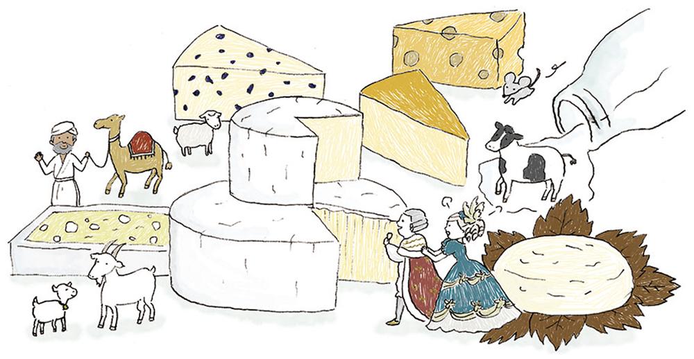 世界のチーズ図鑑のイラスト1